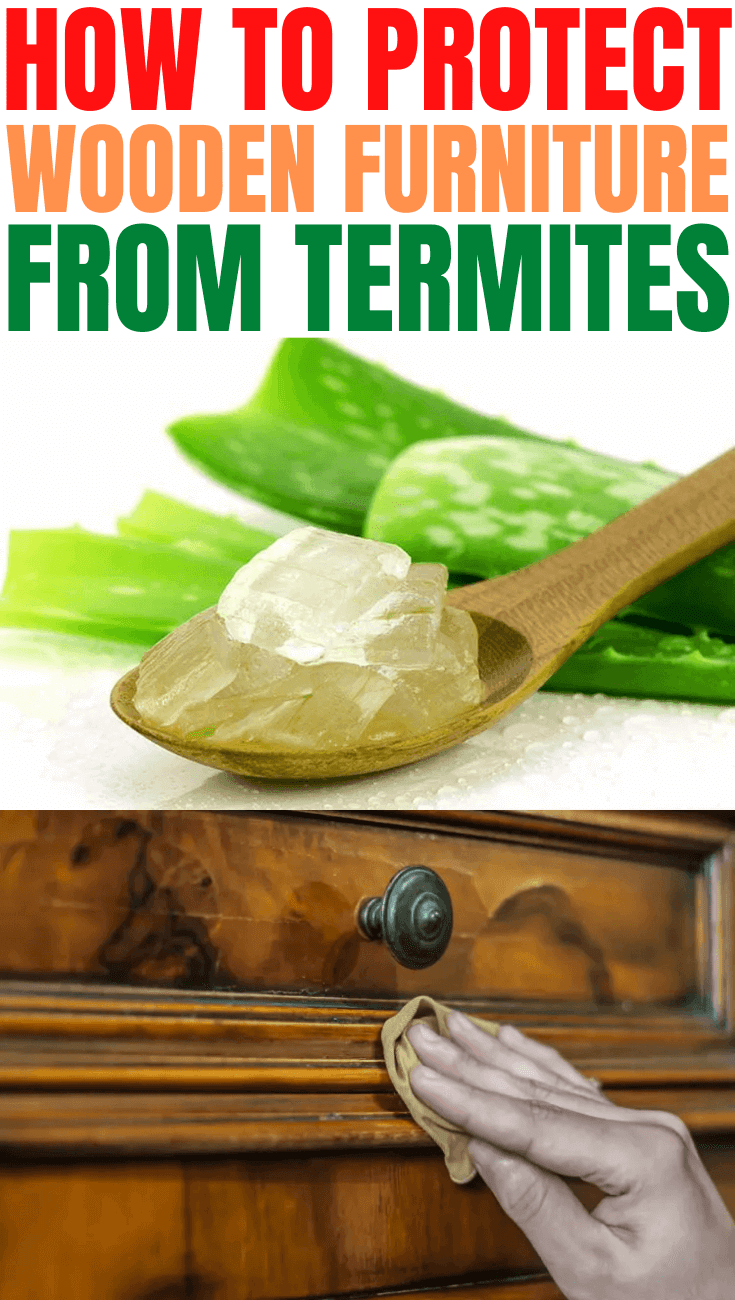HOW TO PROTECT WOODEN FURNITURE FROM TERMITES