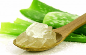SMEAR ALOE VERA TO PROTECT WOODEN FURNITURE FROM TERMITES