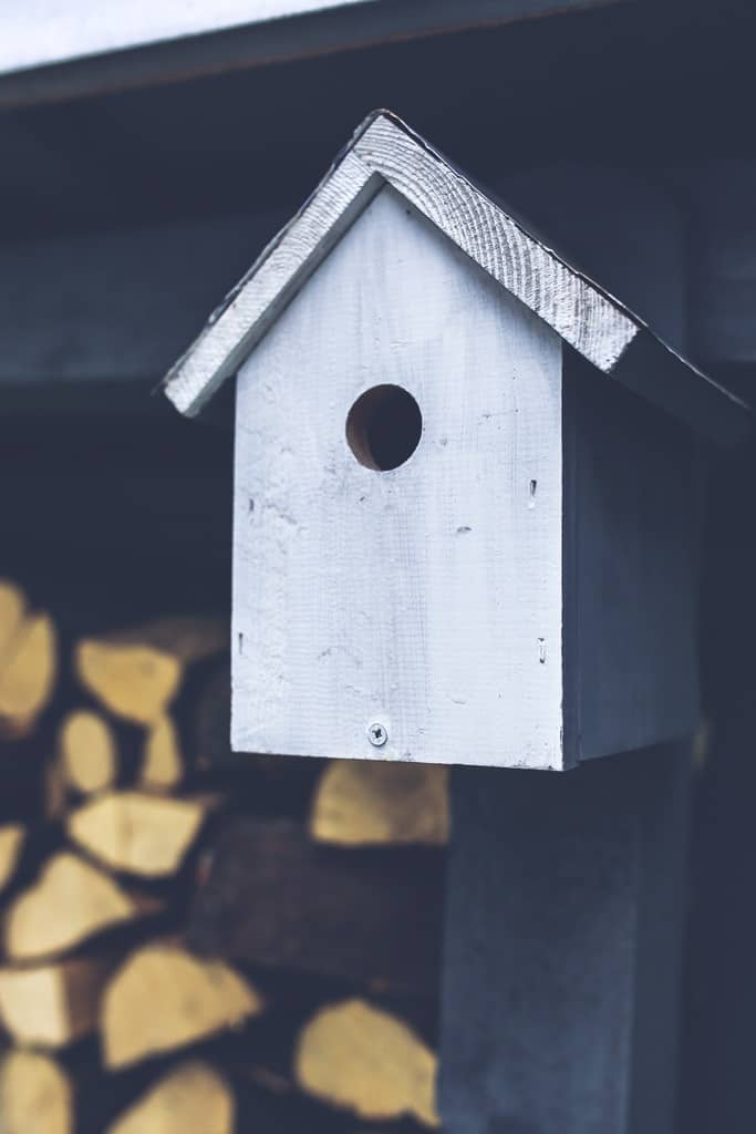 BIRD HOUSE WOODWORKING PROJECTS FOR KIDS