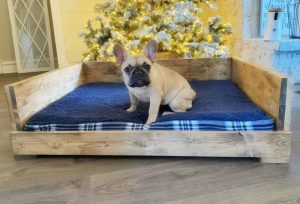 DIY PET BED WOODWORKING PROJECT FURNITURE IDEAS