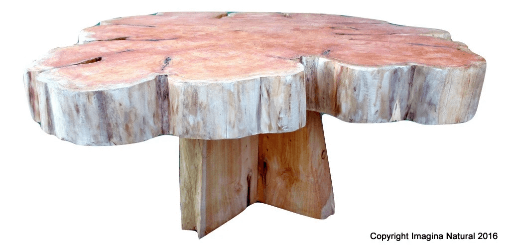 NATURAL WOOD SLICE COFFEE TABLE